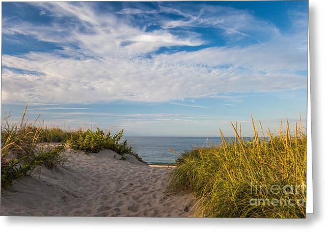 Eastern American Beach Grass Greeting Cards - Head of the Meadow Greeting Card by Susan Cole Kelly