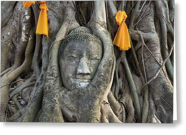 Head of The Sand Stone Buddha Image Greeting Card by Tosporn Preede