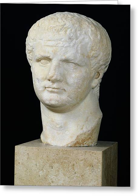 Marble Stone Greeting Cards - Head of Titus Greeting Card by Anonymous