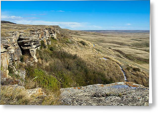 Prairie Heritage Site Greeting Cards - Head Smashed In Buffalo Jump Greeting Card by Robin Webster