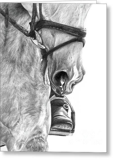 Equestrian Commissions Greeting Cards - Head to Toe Greeting Card by Sheona Hamilton-Grant