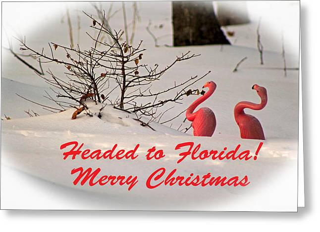 Humorous Greeting Cards Digital Art Greeting Cards - Headed To Florida Greeting Card by Lorna Rogers Photography