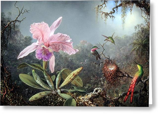 Cattleya Greeting Cards - Heades Cattleya Orchid And Three Brazilian Hummingbirds Greeting Card by Cora Wandel