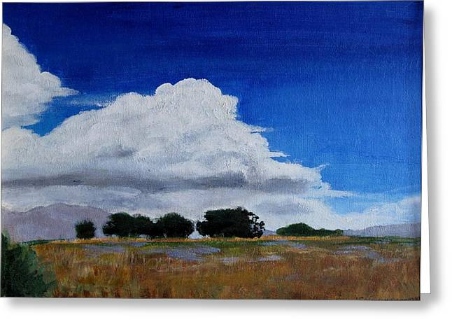Field. Cloud Greeting Cards - Heading for a Storm Greeting Card by Jan Brieger-Scranton