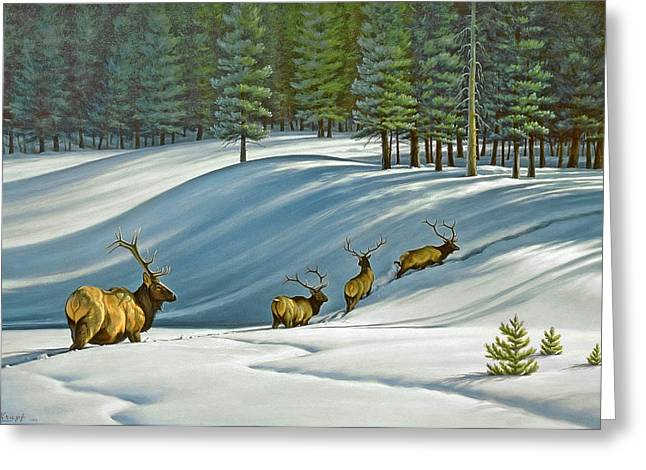 Elk Wildlife Greeting Cards - Heading for Timber - elk Greeting Card by Paul Krapf