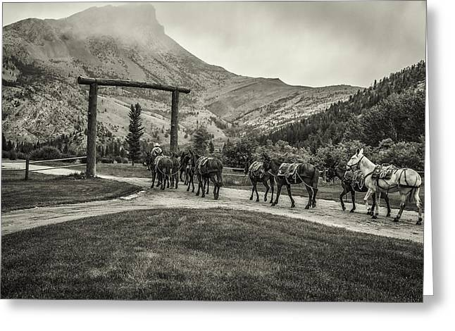 Black Lodge Photographs Greeting Cards - Heading Into The Mountains Greeting Card by Thomas Young