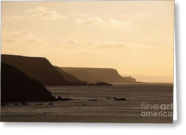 Catherine White Greeting Cards - Headland Greeting Card by Anne Gilbert
