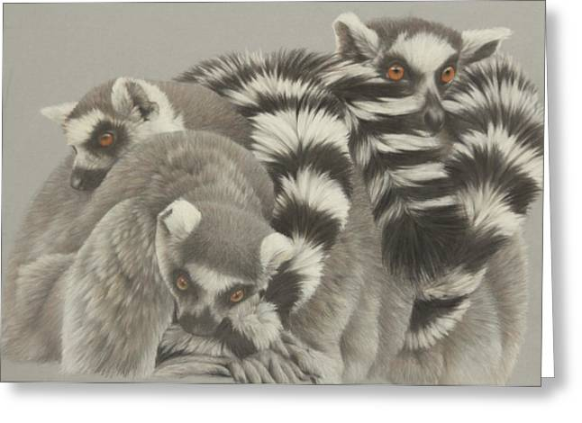 Madagascar Drawings Greeting Cards - Heads and Tails Greeting Card by Clare Shaughnessy