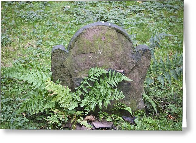Occupy Greeting Cards - Headstone and Ferns Squared Greeting Card by Teresa Mucha
