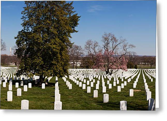 Arlington Photographs Greeting Cards - Headstones In A Cemetery, Arlington Greeting Card by Panoramic Images