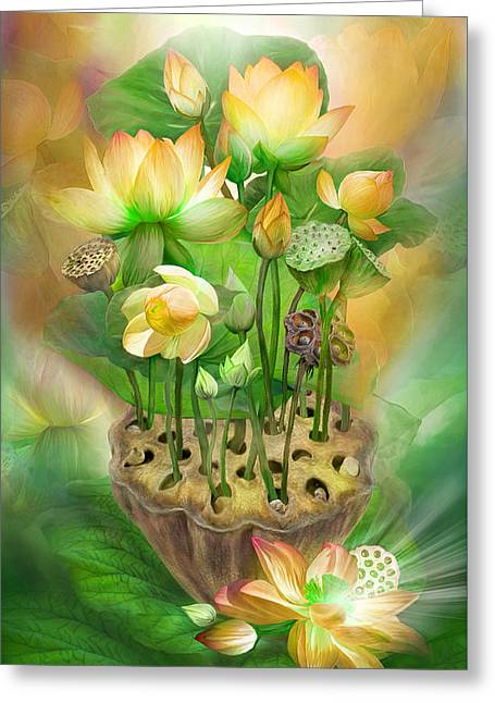 Lotus Blossoms Greeting Cards - Healing Lotus - Solar Plexus Greeting Card by Carol Cavalaris