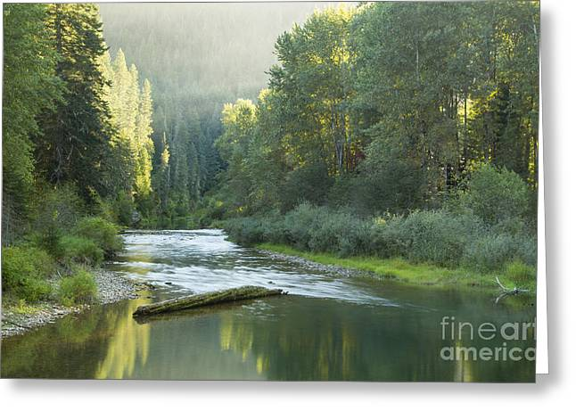 Healing Waters Greeting Card by Idaho Scenic Images Linda Lantzy