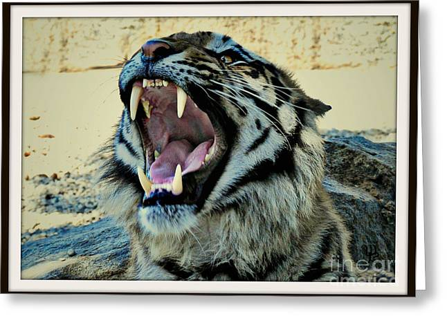 The Tiger Greeting Cards - Hear Me Roar Greeting Card by Mindy Bench