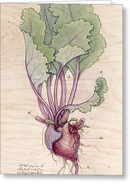 Botany Pyrography Greeting Cards - Heart Beet Greeting Card by Fay Helfer