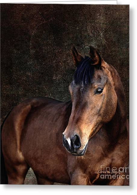 Horse Images Greeting Cards - Heart Greeting Card by Karen Slagle