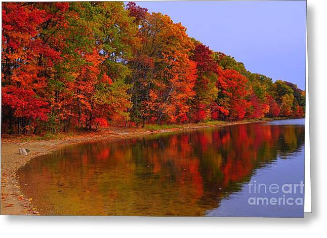 Northern Greeting Cards - Heart of Autumn Greeting Card by Terri Gostola