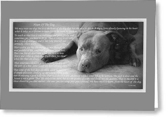 Bully Greeting Cards - Heart Of The Dog Greeting Card by Sue Long