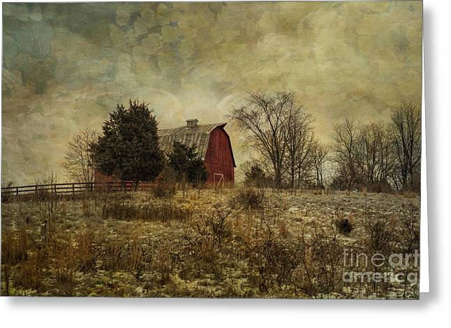 Left Behind Greeting Cards - Heart of the Farm Greeting Card by Terry Rowe