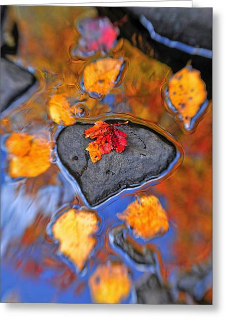 Colorful Photos Greeting Cards - Heart Rock Reflections Greeting Card by Joseph Rossbach