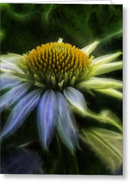 Nature Center Greeting Cards - Heart Treasure Greeting Card by Jean OKeeffe Macro Abundance Art
