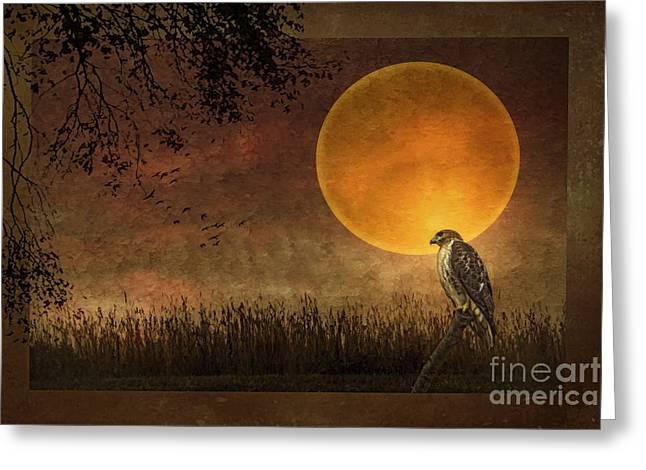October Framed Greeting Cards - Heartland Harvest Greeting Card by Tom York Images