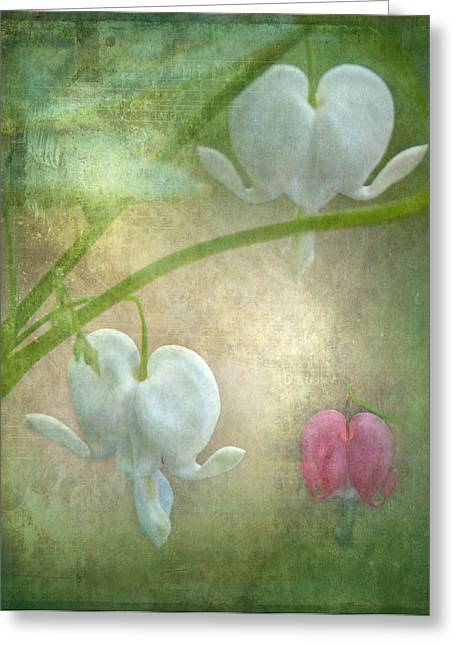 White As Snow Greeting Cards - Hearts Greeting Card by Angie Vogel
