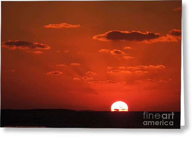 Danielle Perry Photographs Greeting Cards - Heat of the Night Greeting Card by Danielle  Perry