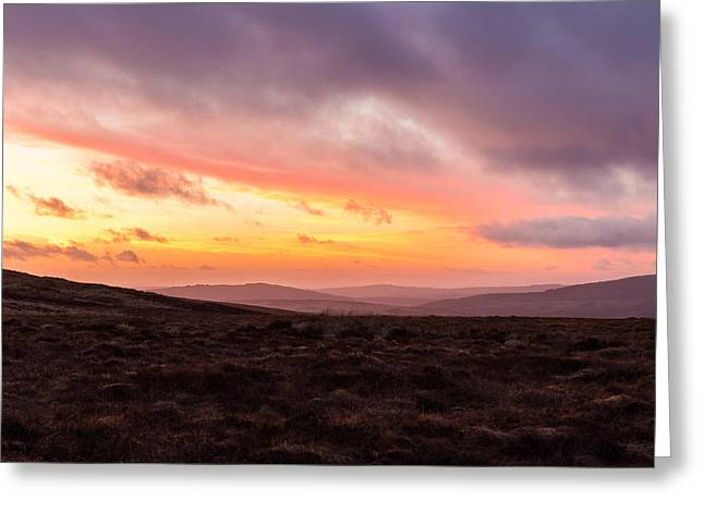 Heathland Greeting Cards - Heathlands at dusk in Wicklow Mountains Greeting Card by Semmick Photo