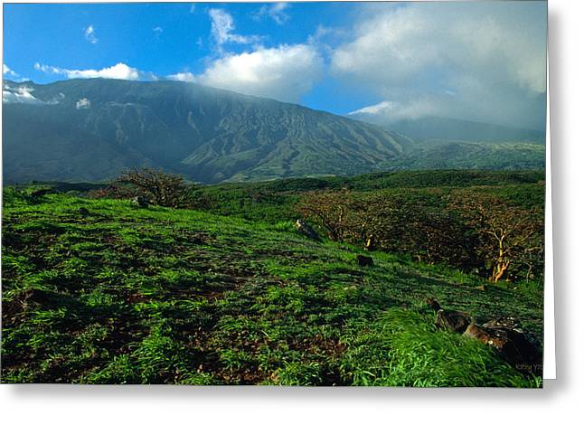 Haleakala Maui Greeting Cards - Heaven on Earth Greeting Card by Kathy Yates