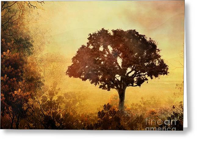 Fog Mixed Media Greeting Cards - Heavenly Dawn Greeting Card by Bedros Awak