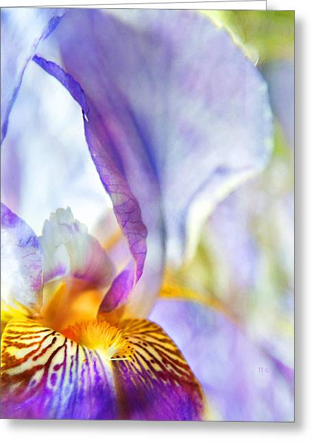 Heavenly Iris Greeting Card by Theresa Tahara