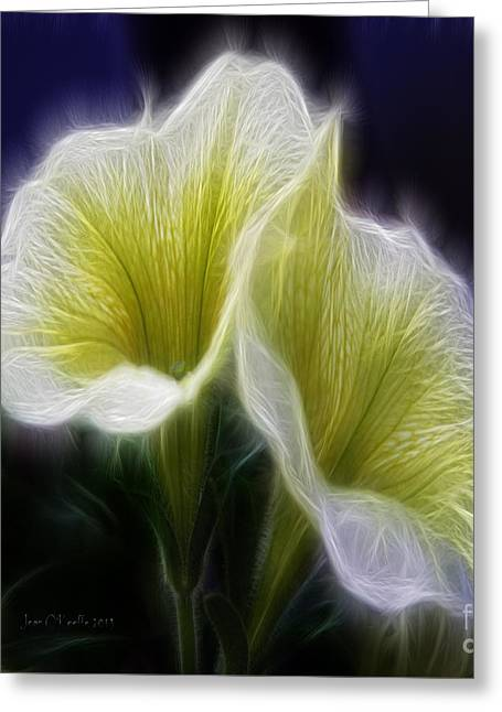Heavenly Scent Greeting Cards - Heavenly Scent Greeting Card by Jean OKeeffe Macro Abundance Art