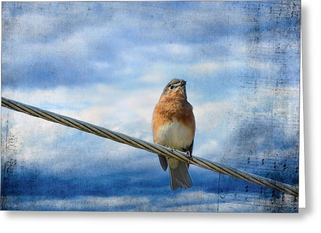 Heavenly Song Of The Bluebird Greeting Card by Jai Johnson