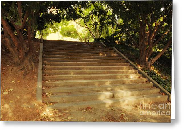 Dappled Light Greeting Cards - Heavenly Stairway Greeting Card by Madeline Ellis