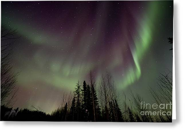 Northern Lights Greeting Cards - Heavens lights Greeting Card by Priska Wettstein