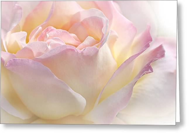 Heaven's Pink Rose Flower Greeting Card by Jennie Marie Schell