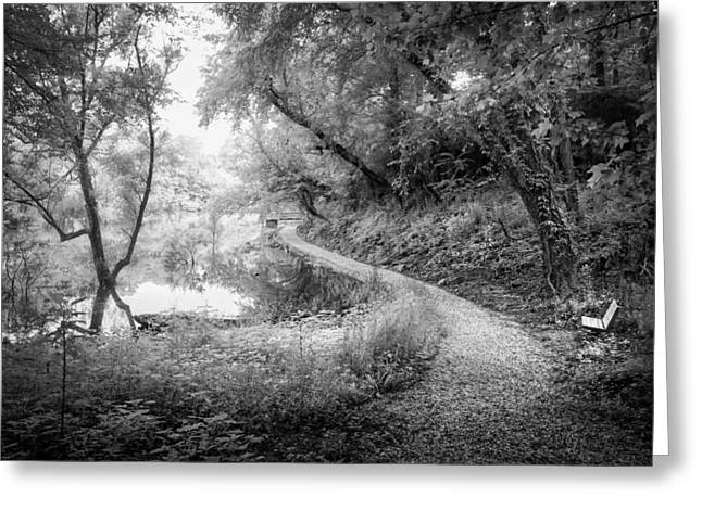 White River Scene Greeting Cards - Heavens Trail Greeting Card by Debra and Dave Vanderlaan