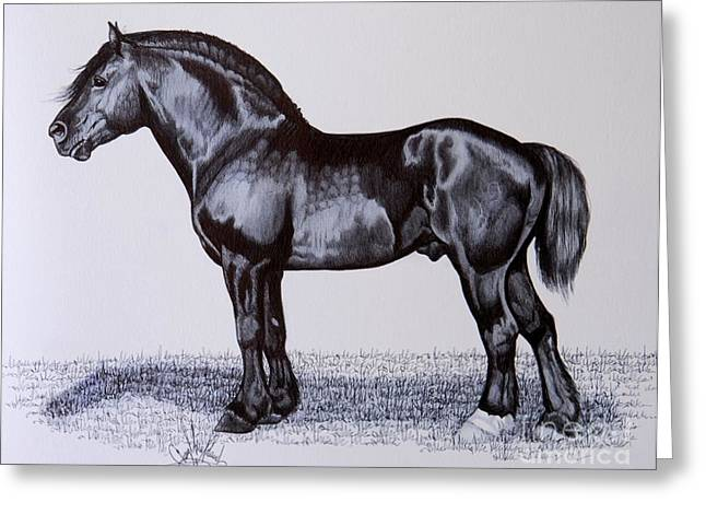 Horse Images Drawings Greeting Cards - Heavy Draft Horse Series Greeting Card by Cheryl Poland