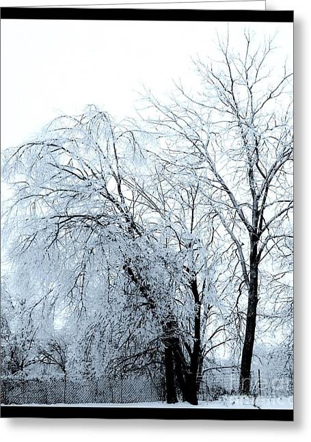 Winter Posters Greeting Cards - Heavy Ice Tree Redo Greeting Card by Marsha Heiken