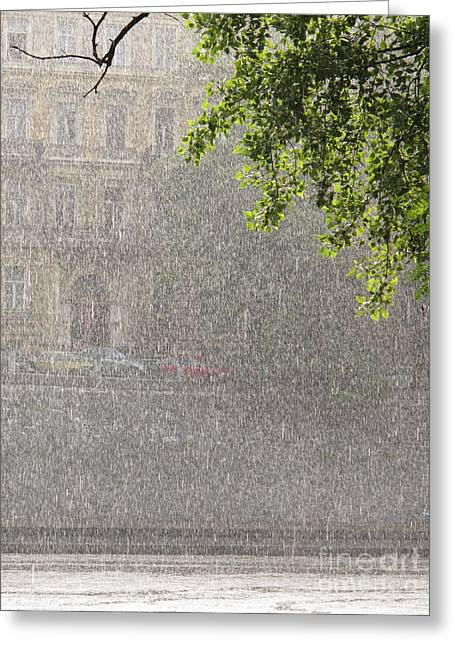 Heavy Rain Greeting Card by Jan Halaska