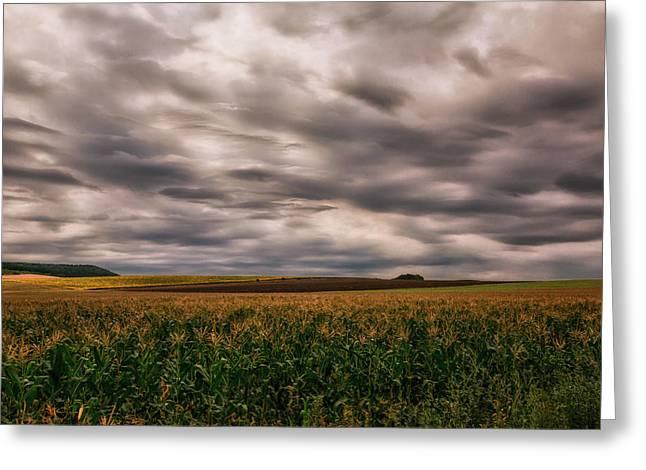 Cultivation Digital Art Greeting Cards - Heavy skies rich land Greeting Card by Eti Reid