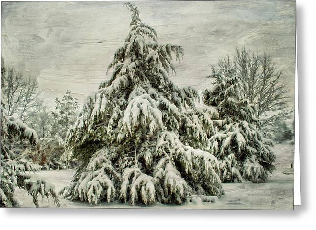 Snow Tree Prints Greeting Cards - Heavy Snow Greeting Card by Kathy Jennings