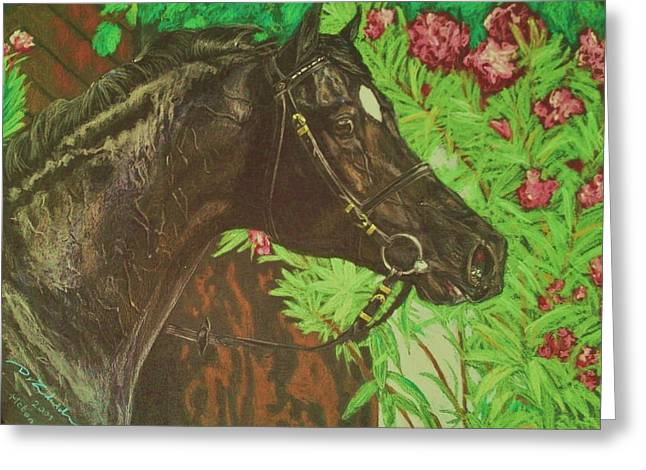 Equestrian Prints Pastels Greeting Cards - HEBAN sport horse stallion Greeting Card by Dorota Zdunska