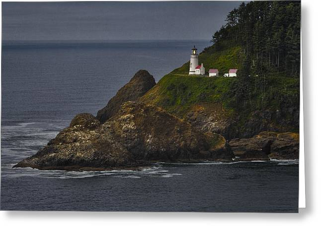 Seabirds Greeting Cards - Heceta Head Lighthouse Greeting Card by Joan Carroll