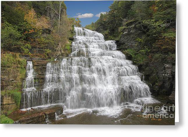 Schuyler County New York Greeting Cards - Hector Falls Greeting Card by Allen Beatty