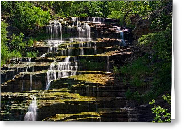 Schuyler County New York Greeting Cards - Hector Falls Greeting Card by Dave Files