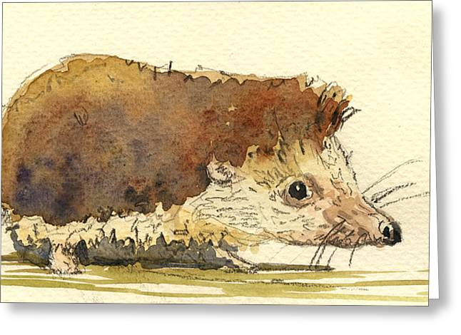 Wildlife Watercolor Greeting Cards - Hedgehog Greeting Card by Juan  Bosco
