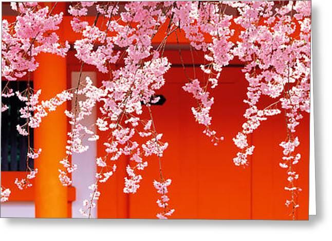 Kyoto Greeting Cards - Heian-jingu Kyoto Japan Greeting Card by Panoramic Images