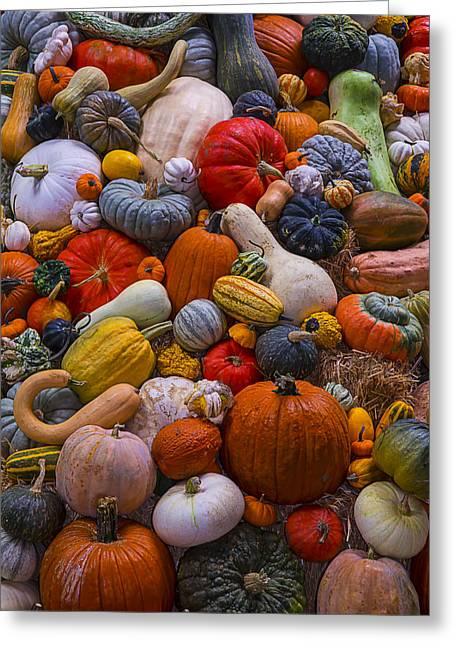 Gourds Greeting Cards - Heirloom Harvest Greeting Card by Garry Gay
