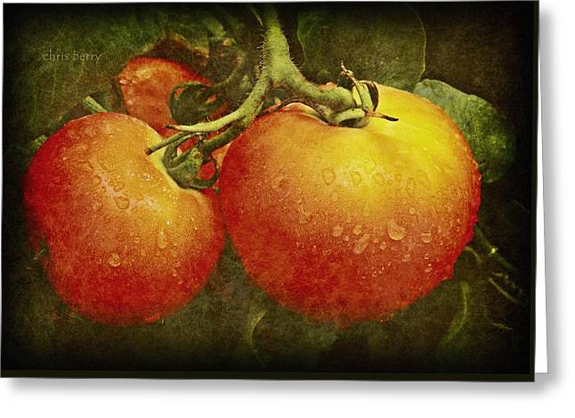 Heirloom Tomatoes On The Vine Greeting Card by Chris Berry